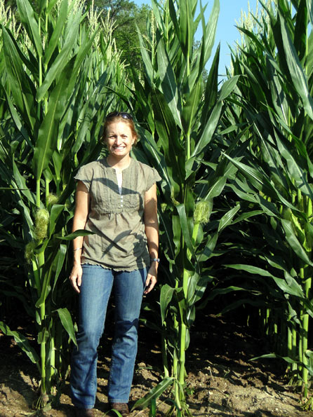 Field Corn (Cathy)